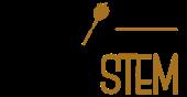 partystem.com Logo
